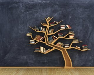 tree book shelf  with books